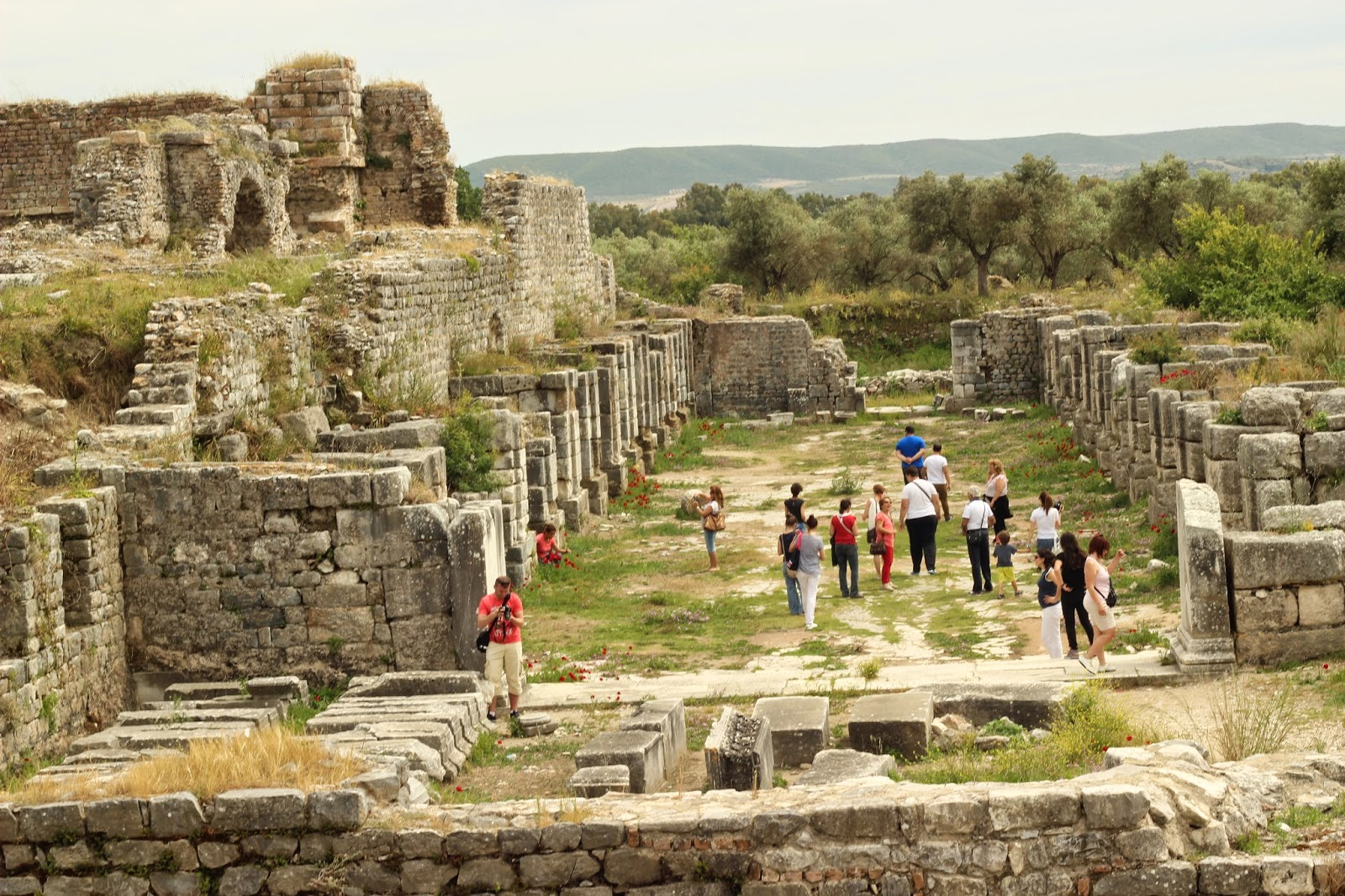 2 Day Ephesus, Priene, Miletus And Didyma Tour from Istanbul 6