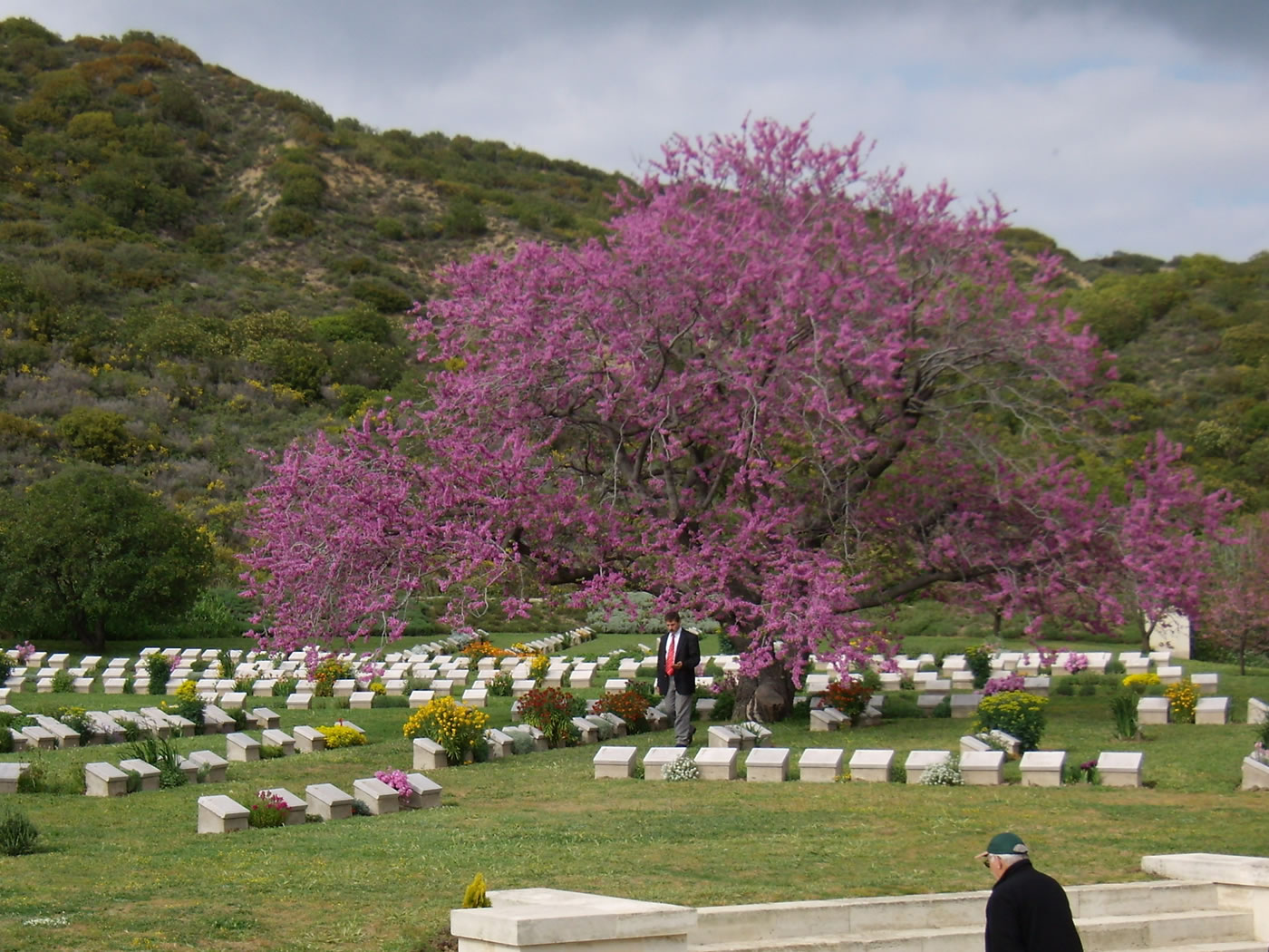 1 Day Gallipoli Day Tour from Istanbul 4